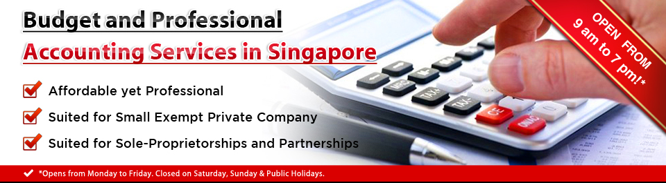 Budget and Professional Accounting Services in Singapore
