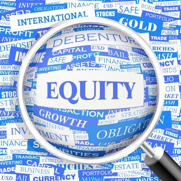 owners equity paper The term trial balance period refer to an error-checking step in the accounting cycle with pencil and paper total owners equity plus inc : 19,130: total liabilities plus equity : 29,980: exhibit 6.